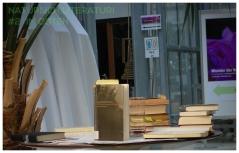 Montag, 25.05.15, 19.30 Uhr Literaturreihe im Botanischen Garten IM OSTEN (Termin 2)